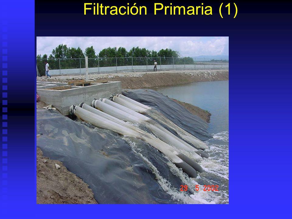 Filtración del agua Primera filtración con mallas de ¼ y 1000 micras Primera filtración con mallas de ¼ y 1000 micras Segunda filtración con mallas de