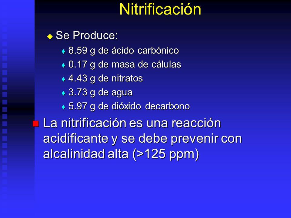 Nitrificación La reacción química metabólica para la nitrificación se puede mirar así: La reacción química metabólica para la nitrificación se puede m
