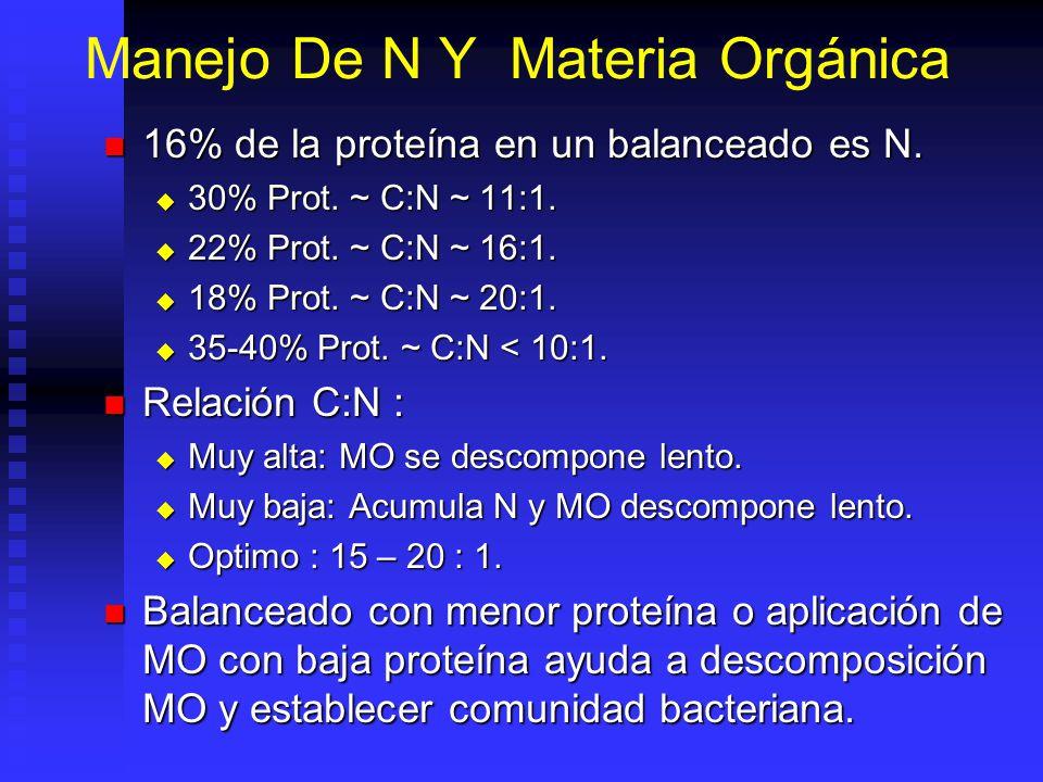 Sistema Heterotrófico En cultivos intensivos la nitrificación sola no es capaz de oxidar toda la amonia producida En cultivos intensivos la nitrificac