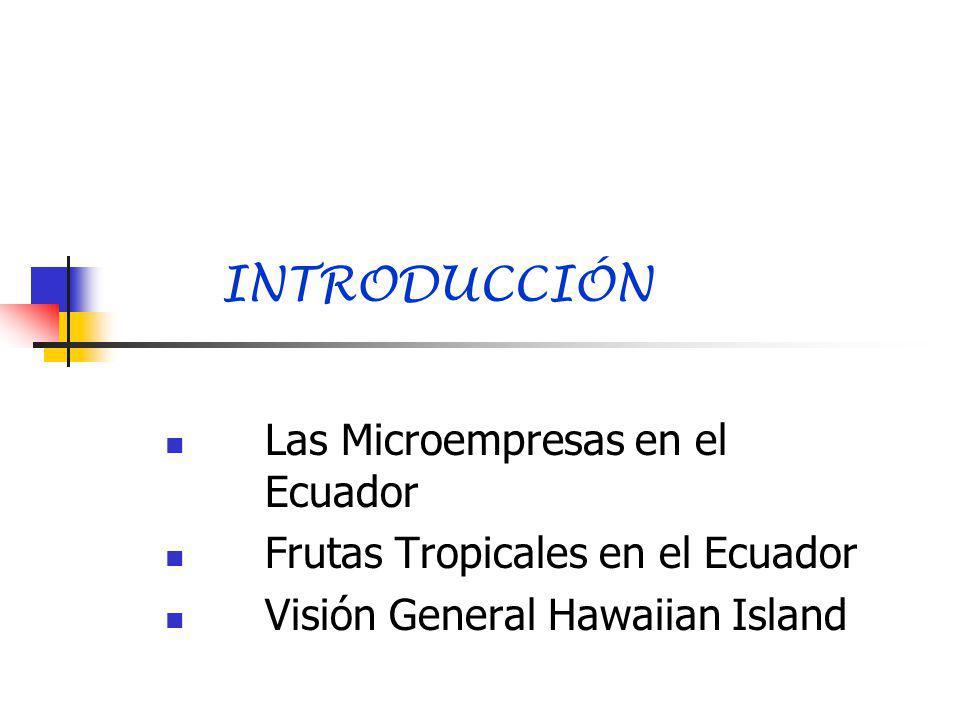 LAS MICROEMPRESAS EN EL ECUADOR Menos de 10 personas Existen 1´043.400 microempresas Generan más de 2´500.000 plazas de trabajo