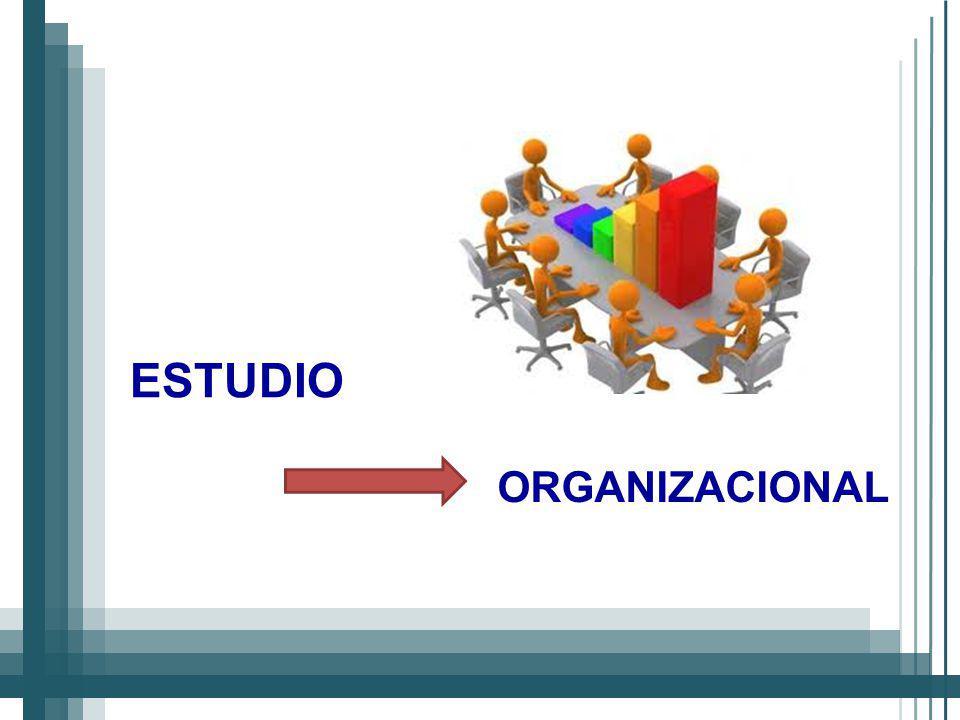 ORGANIZACIONAL ESTUDIO