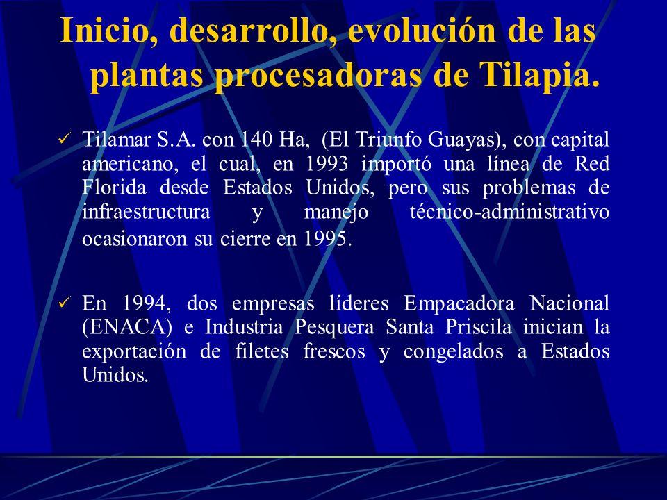 Tilamar S.A. con 140 Ha, (El Triunfo Guayas), con capital americano, el cual, en 1993 importó una línea de Red Florida desde Estados Unidos, pero sus