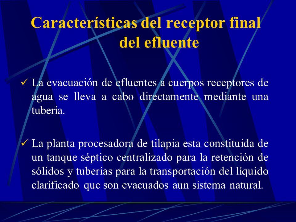 La evacuación de efluentes a cuerpos receptores de agua se lleva a cabo directamente mediante una tubería. La planta procesadora de tilapia esta const