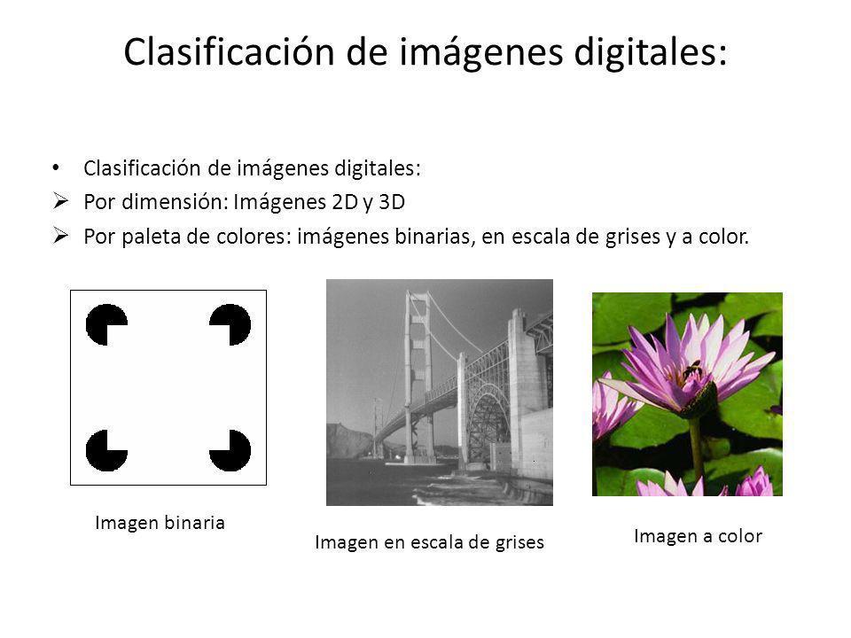 Clasificación de imágenes digitales: Por dimensión: Imágenes 2D y 3D Por paleta de colores: imágenes binarias, en escala de grises y a color. Imagen e