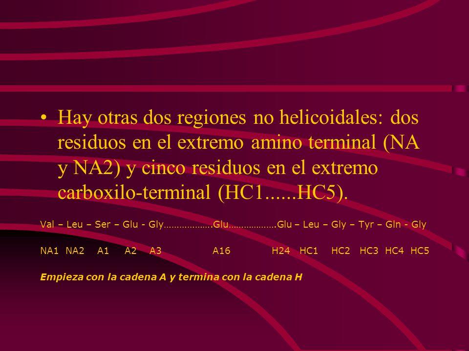 Hay otras dos regiones no helicoidales: dos residuos en el extremo amino terminal (NA y NA2) y cinco residuos en el extremo carboxilo-terminal (HC1...