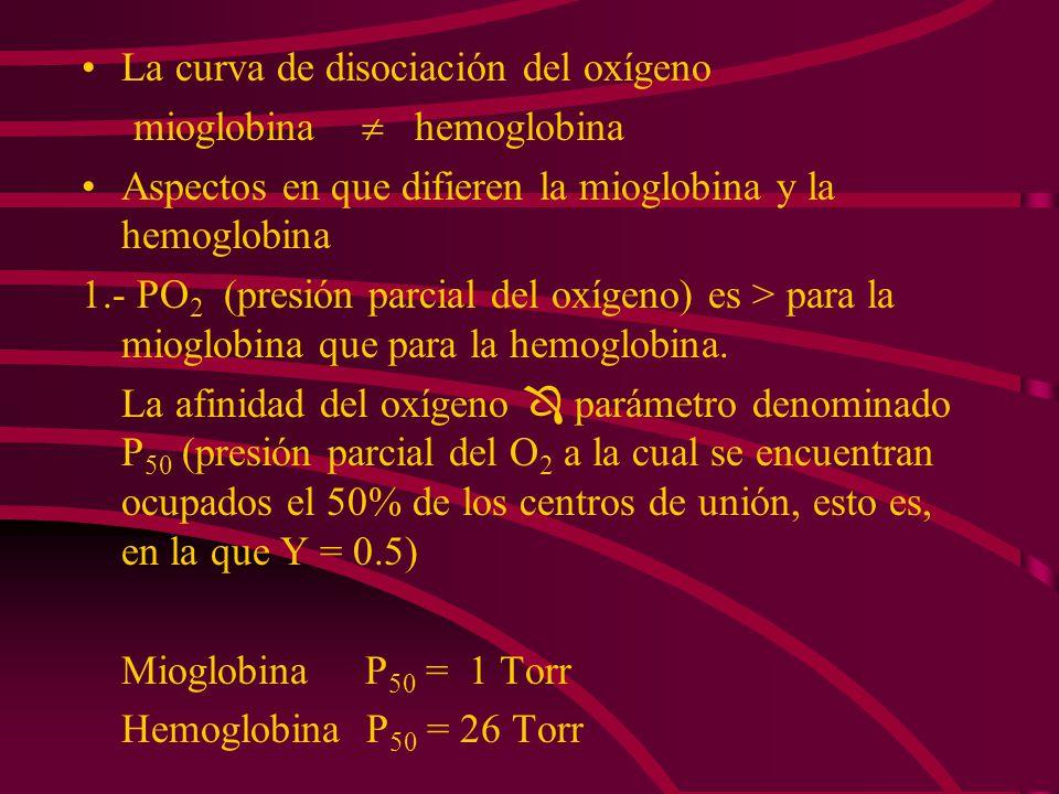 La curva de disociación del oxígeno mioglobina hemoglobina Aspectos en que difieren la mioglobina y la hemoglobina 1.- PO 2 (presión parcial del oxíge