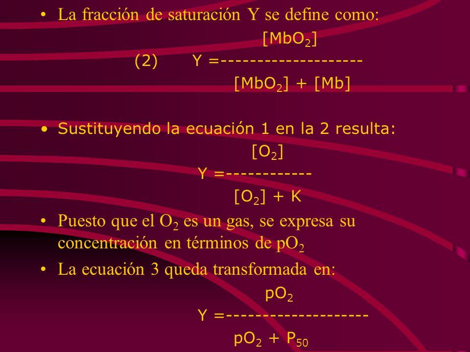 La fracción de saturación Y se define como: [MbO 2 ] (2) Y =-------------------- [MbO 2 ] + [Mb] Sustituyendo la ecuación 1 en la 2 resulta: [O 2 ] Y