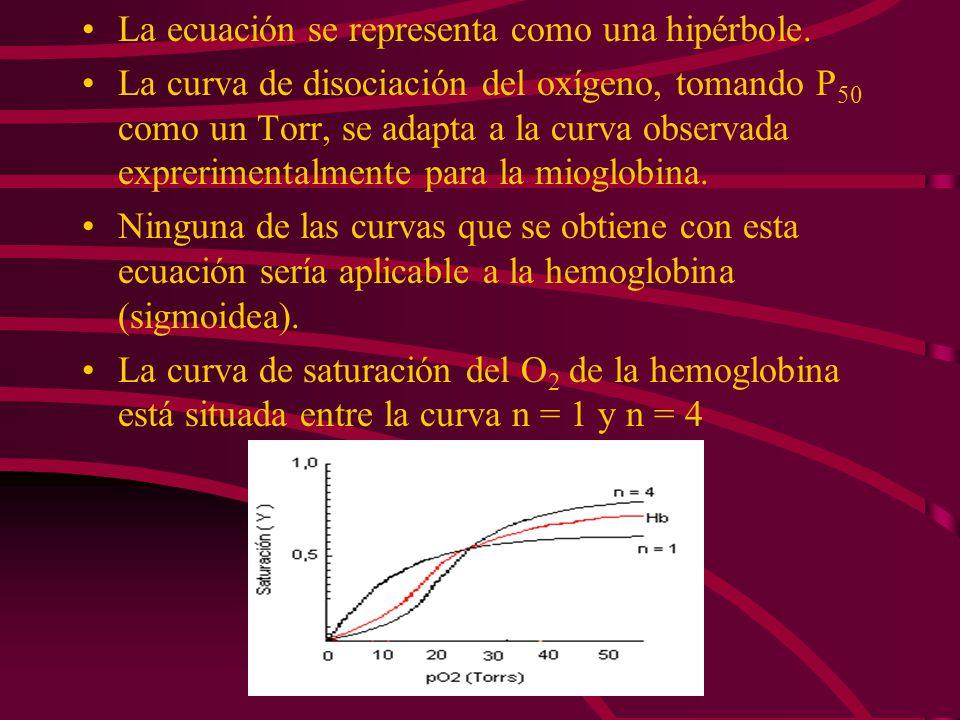 La ecuación se representa como una hipérbole. La curva de disociación del oxígeno, tomando P 50 como un Torr, se adapta a la curva observada exprerime