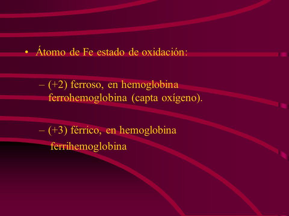 Átomo de Fe estado de oxidación: –(+2) ferroso, en hemoglobina ferrohemoglobina (capta oxígeno). –(+3) férrico, en hemoglobina ferrihemoglobina