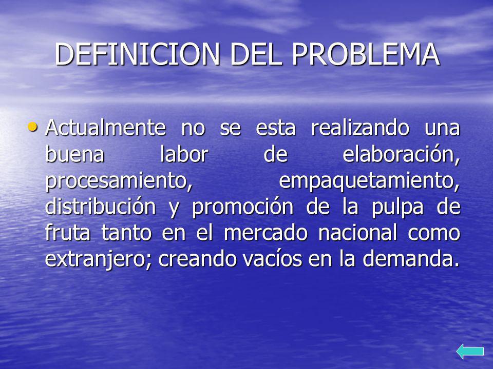 DEFINICION DEL PROBLEMA Actualmente no se esta realizando una buena labor de elaboración, procesamiento, empaquetamiento, distribución y promoción de