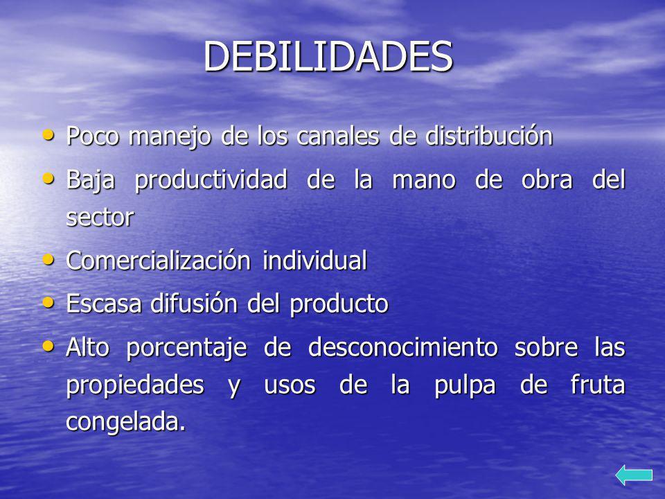 DEBILIDADES Poco manejo de los canales de distribución Poco manejo de los canales de distribución Baja productividad de la mano de obra del sector Baj