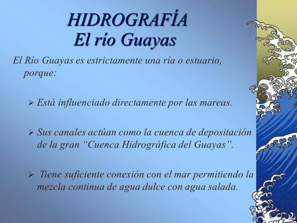 HIDROGRAFÍA Los principales drenajes en la zona de estudio son el Río Guayas, el Río Jubones y el Río Pagua. Los drenajes en el área de estudio, a exc