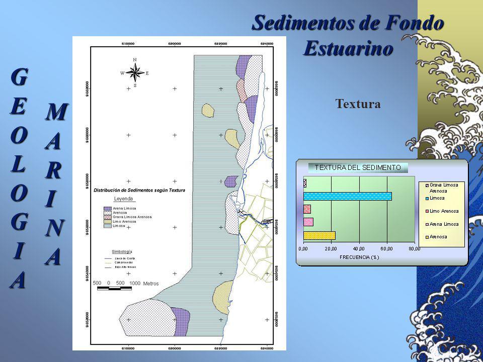 Sedimentos de Fondo Estuarino GEOLOGIA MARINA Diámetro Medio