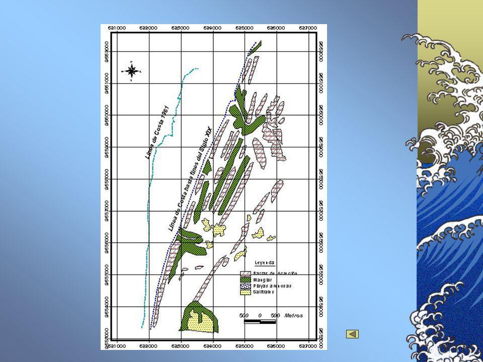 DINÁMICA LITORAL Cruz (1975) por medio de interpretación de fotografías aéreas generó un mapa de características morfológicas.(Ver Paleogeográfico1).