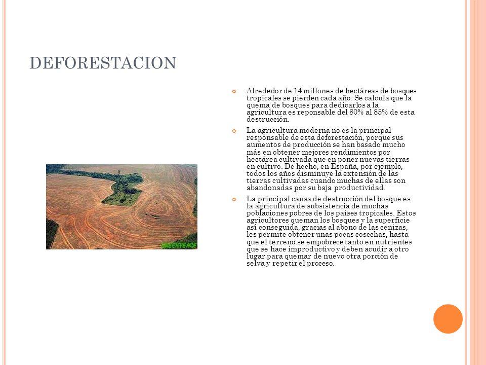 DEFORESTACION Alrededor de 14 millones de hectáreas de bosques tropicales se pierden cada año. Se calcula que la quema de bosques para dedicarlos a la