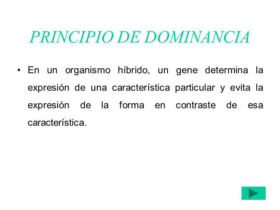 PRINCIPIO DE DOMINANCIA En un organismo híbrido, un gene determina la expresión de una característica particular y evita la expresión de la forma en c