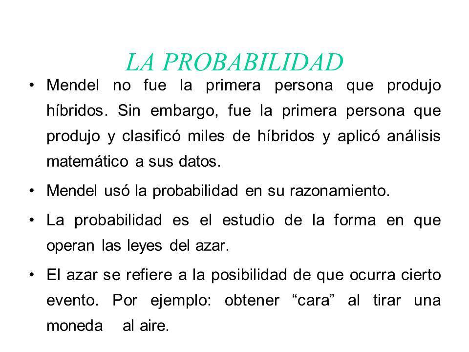 LA PROBABILIDAD Mendel no fue la primera persona que produjo híbridos.