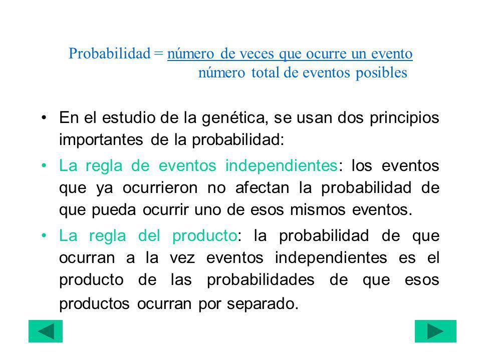 Probabilidad = número de veces que ocurre un evento número total de eventos posibles En el estudio de la genética, se usan dos principios importantes de la probabilidad: La regla de eventos independientes: los eventos que ya ocurrieron no afectan la probabilidad de que pueda ocurrir uno de esos mismos eventos.
