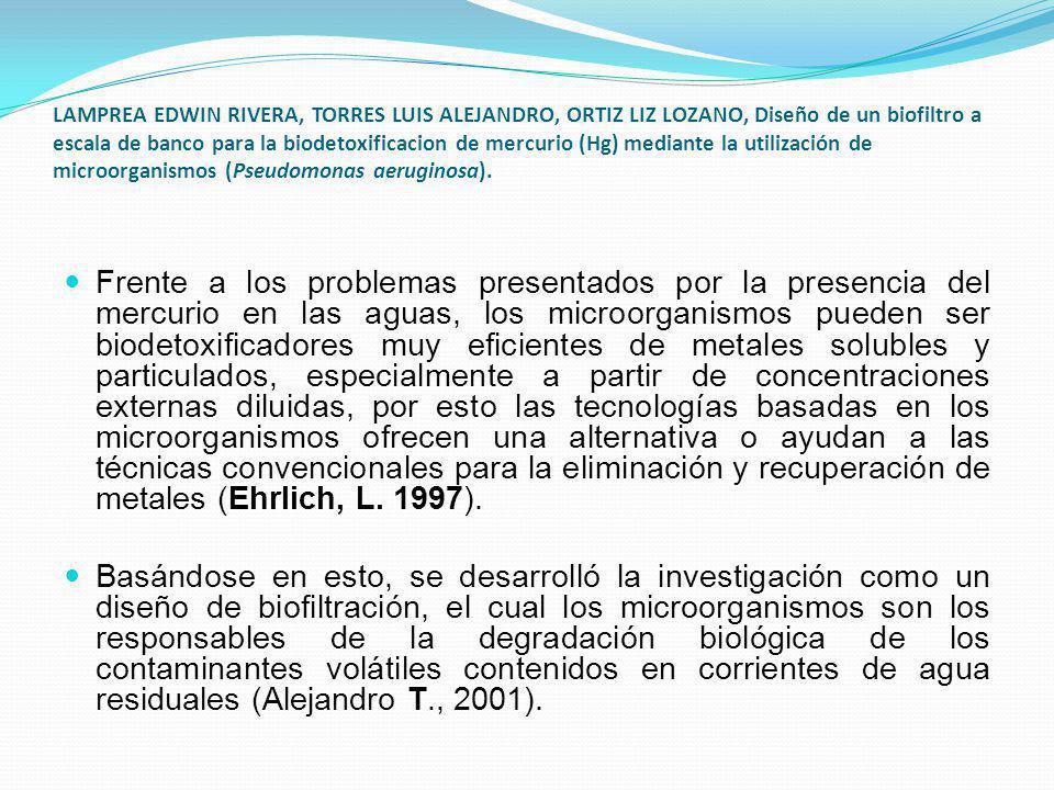 LAMPREA EDWIN RIVERA, TORRES LUIS ALEJANDRO, ORTIZ LIZ LOZANO, Diseño de un biofiltro a escala de banco para la biodetoxificacion de mercurio (Hg) med