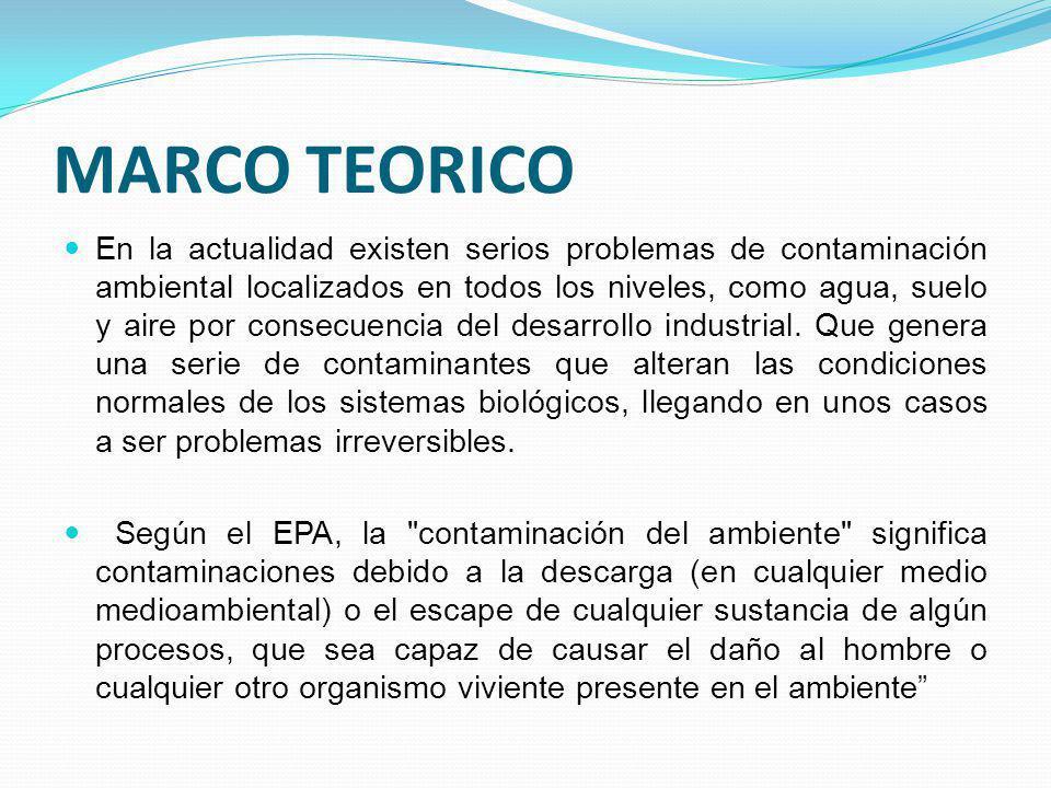MARCO TEORICO En la actualidad existen serios problemas de contaminación ambiental localizados en todos los niveles, como agua, suelo y aire por conse
