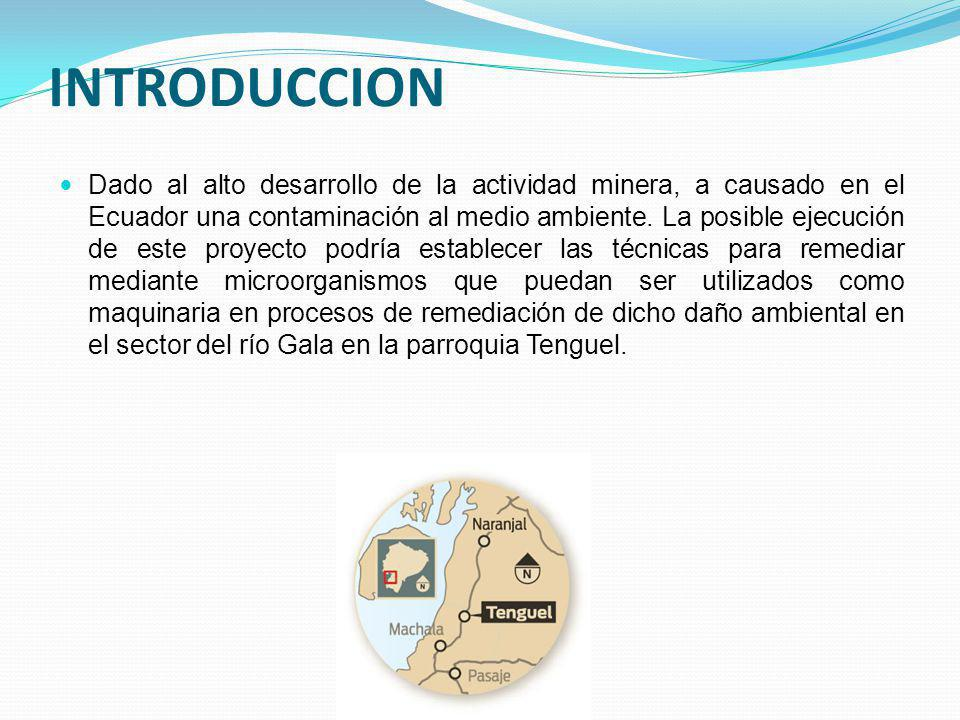 INTRODUCCION Dado al alto desarrollo de la actividad minera, a causado en el Ecuador una contaminación al medio ambiente. La posible ejecución de este