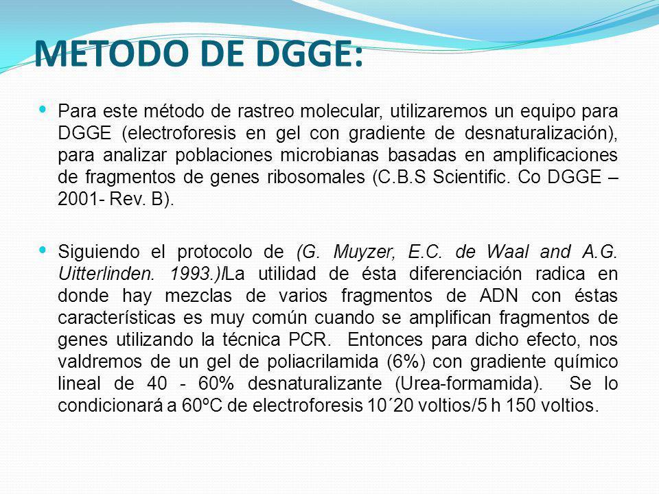 METODO DE DGGE: Para este método de rastreo molecular, utilizaremos un equipo para DGGE (electroforesis en gel con gradiente de desnaturalización), pa