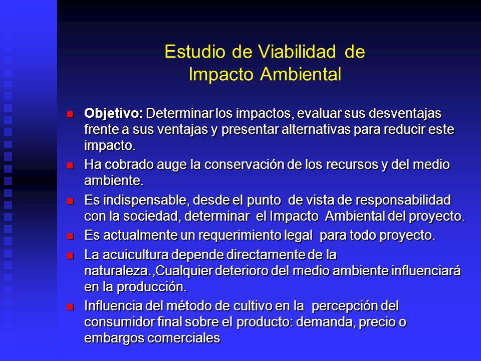 Estudio de Viabilidad de Impacto Ambiental Objetivo: Determinar los impactos, evaluar sus desventajas frente a sus ventajas y presentar alternativas para reducir este impacto.