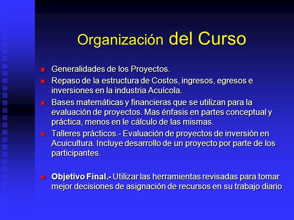 Organización del Curso Generalidades de los Proyectos.