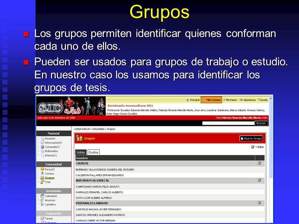 Grupos Los grupos permiten identificar quienes conforman cada uno de ellos. Los grupos permiten identificar quienes conforman cada uno de ellos. Puede