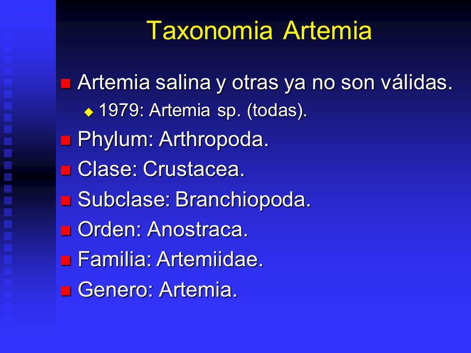 Historia Artemia 1755, Scholosser: 1er estudio artemia : Cancer salinos. 1755, Scholosser: 1er estudio artemia : Cancer salinos. 1758, Linnaeus: Artem