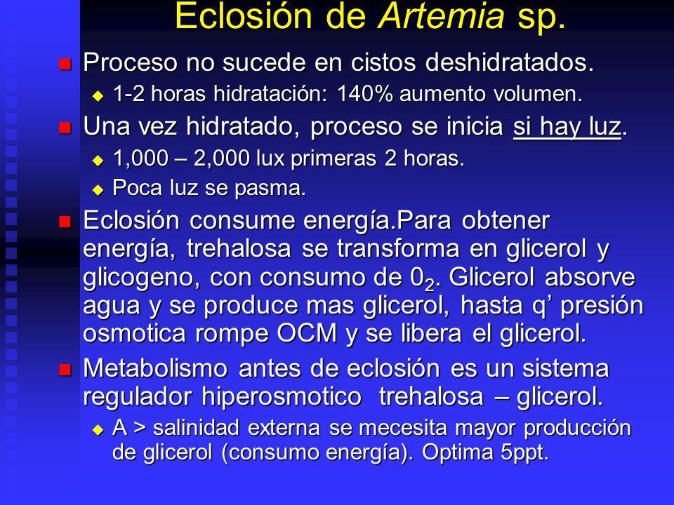 Diametro Cistos y Corion