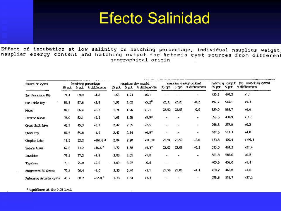 Eclosión de Artemia sp.Proceso no sucede en cistos deshidratados.