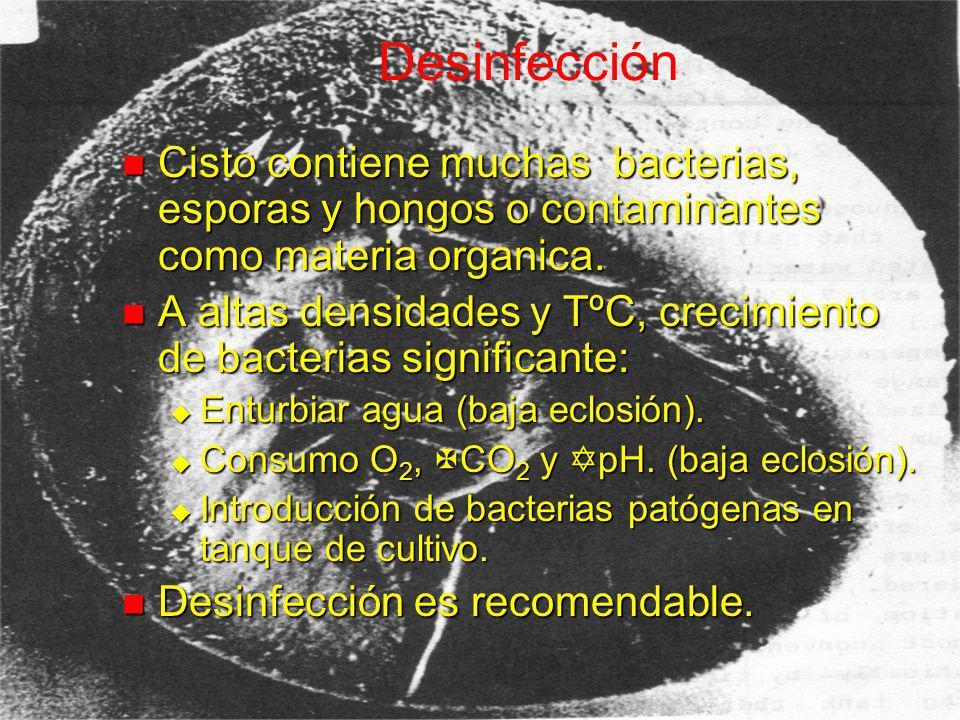 Bacterias en Cistos