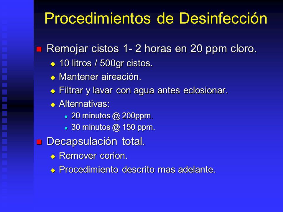 Desinfección Cisto contiene muchas bacterias, esporas y hongos o contaminantes como materia organica.