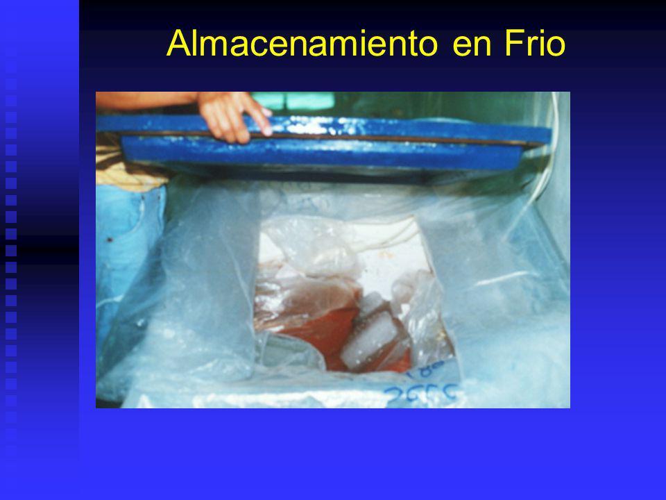 Almacenamiento y Dehidratación Al almacenar evitar sol o UV.