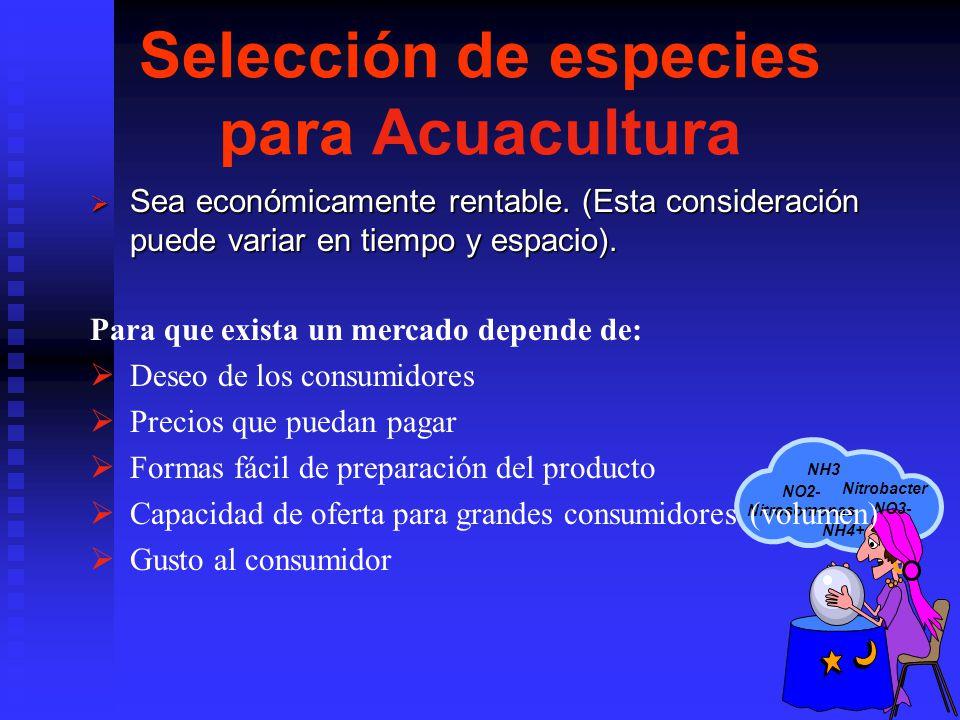 NH3 NH4+ Nitrobacter NO2- Nitrosomonas NO3- Selección de especies para Acuacultura Sea económicamente rentable. (Esta consideración puede variar en ti