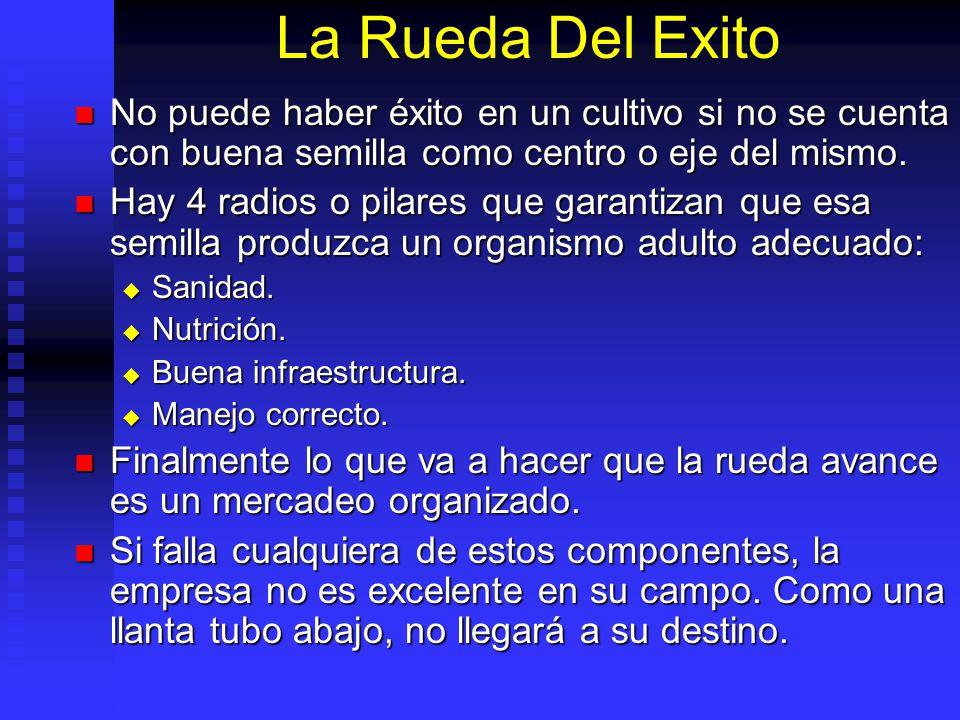 La Rueda Del Exito No puede haber éxito en un cultivo si no se cuenta con buena semilla como centro o eje del mismo.