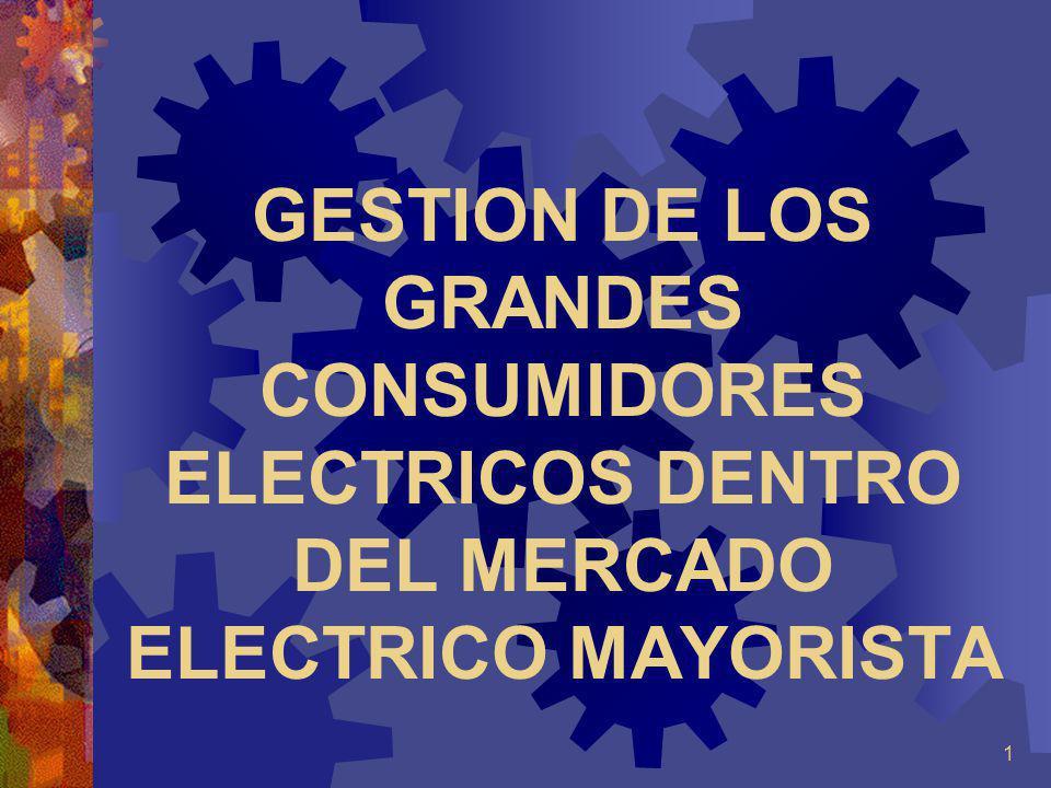 1 GESTION DE LOS GRANDES CONSUMIDORES ELECTRICOS DENTRO DEL MERCADO ELECTRICO MAYORISTA