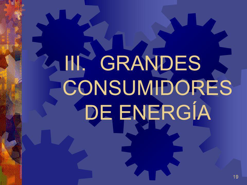19 III. GRANDES CONSUMIDORES DE ENERGÍA