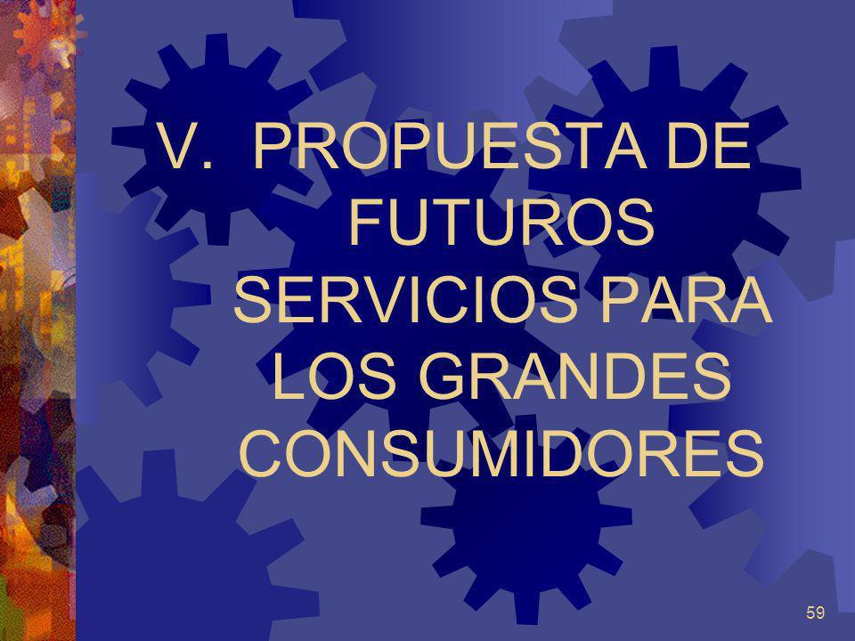 59 V.PROPUESTA DE FUTUROS SERVICIOS PARA LOS GRANDES CONSUMIDORES