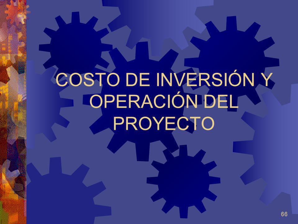 66 COSTO DE INVERSIÓN Y OPERACIÓN DEL PROYECTO