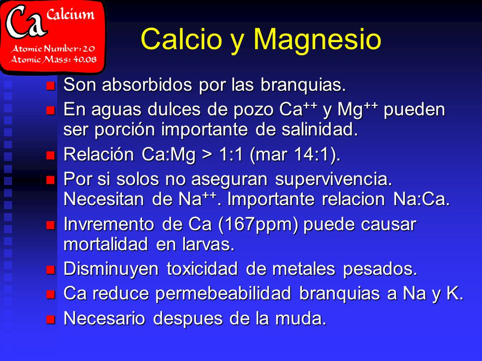 Calcio y Magnesio Son absorbidos por las branquias. Son absorbidos por las branquias. En aguas dulces de pozo Ca ++ y Mg ++ pueden ser porción importa