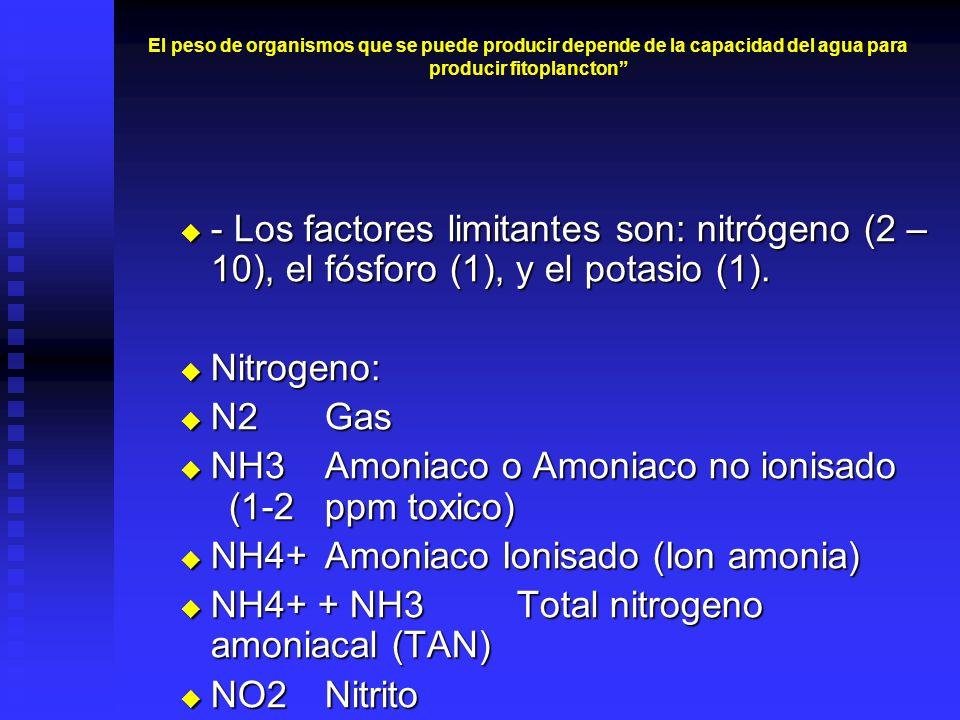 El peso de organismos que se puede producir depende de la capacidad del agua para producir fitoplancton - Los factores limitantes son: nitrógeno (2 – 10), el fósforo (1), y el potasio (1).