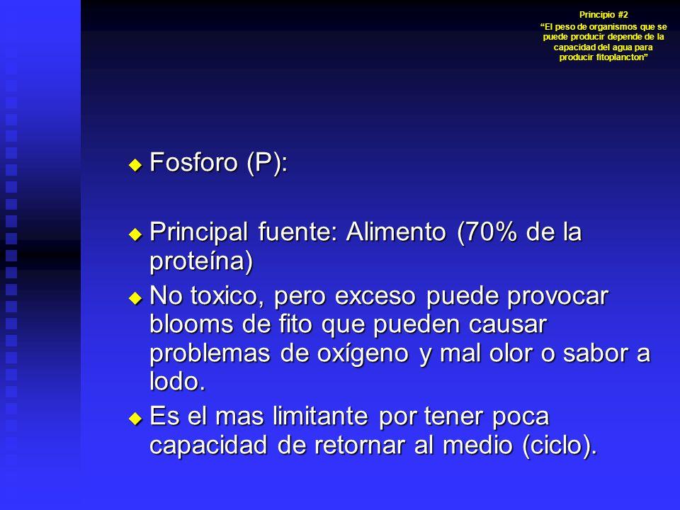 Fosforo (P): Fosforo (P): Principal fuente: Alimento (70% de la proteína) Principal fuente: Alimento (70% de la proteína) No toxico, pero exceso puede