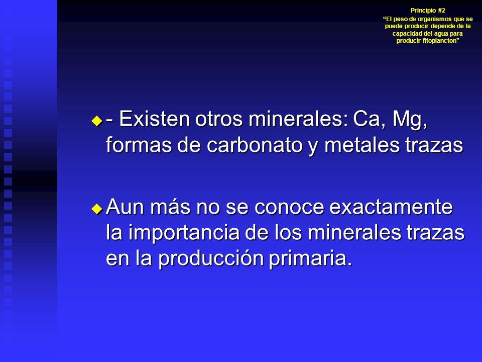 - Existen otros minerales: Ca, Mg, formas de carbonato y metales trazas - Existen otros minerales: Ca, Mg, formas de carbonato y metales trazas Aun más no se conoce exactamente la importancia de los minerales trazas en la producción primaria.