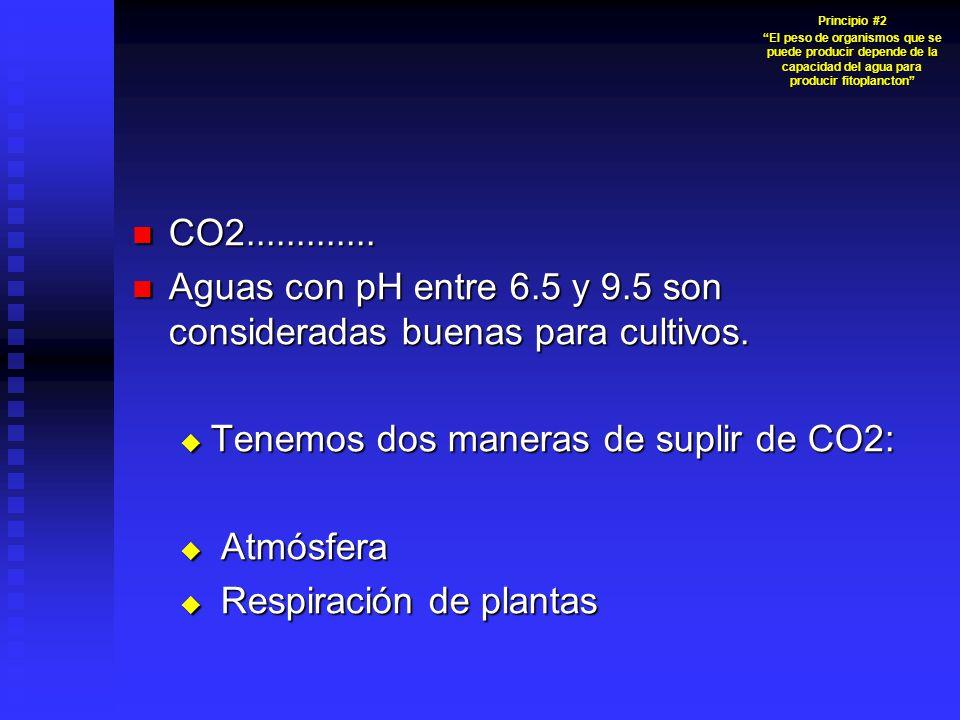 CO2............. CO2............. Aguas con pH entre 6.5 y 9.5 son consideradas buenas para cultivos. Aguas con pH entre 6.5 y 9.5 son consideradas bu