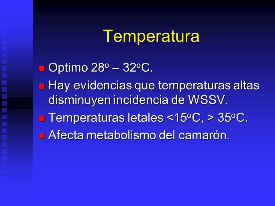 Temperatura Optimo 28 o – 32 o C. Optimo 28 o – 32 o C. Hay evidencias que temperaturas altas disminuyen incidencia de WSSV. Hay evidencias que temper