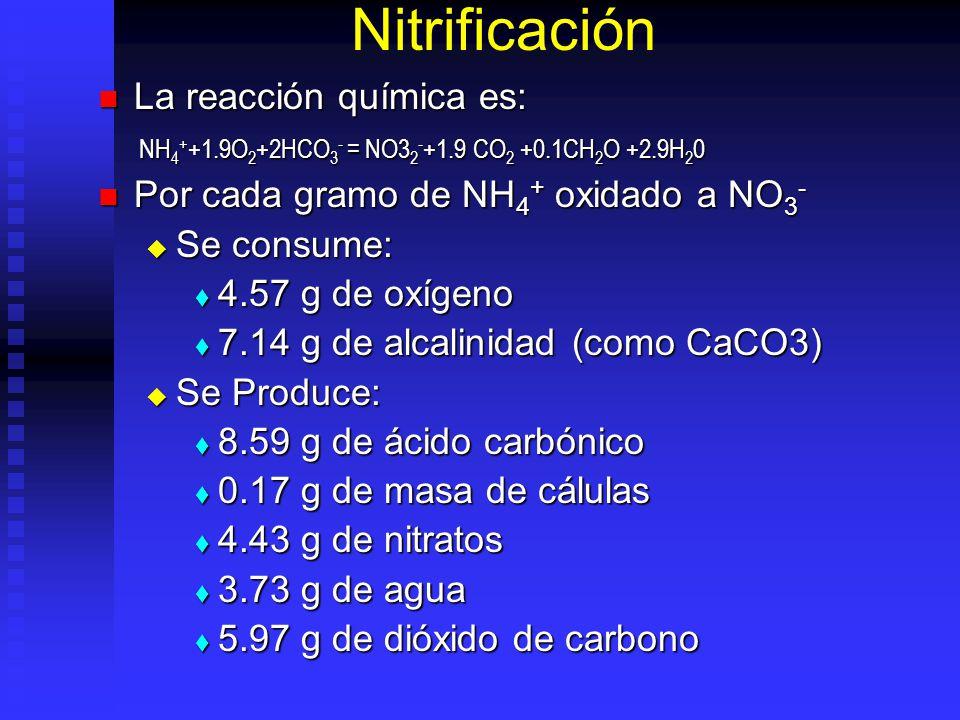 Nitrificación La reacción química es: La reacción química es: NH 4 + +1.9O 2 +2HCO 3 - = NO3 2 - +1.9 CO 2 +0.1CH 2 O +2.9H 2 0 NH 4 + +1.9O 2 +2HCO 3 - = NO3 2 - +1.9 CO 2 +0.1CH 2 O +2.9H 2 0 Por cada gramo de NH 4 + oxidado a NO 3 - Por cada gramo de NH 4 + oxidado a NO 3 - Se consume: Se consume: 4.57 g de oxígeno 4.57 g de oxígeno 7.14 g de alcalinidad (como CaCO3) 7.14 g de alcalinidad (como CaCO3) Se Produce: Se Produce: 8.59 g de ácido carbónico 8.59 g de ácido carbónico 0.17 g de masa de cálulas 0.17 g de masa de cálulas 4.43 g de nitratos 4.43 g de nitratos 3.73 g de agua 3.73 g de agua 5.97 g de dióxido de carbono 5.97 g de dióxido de carbono