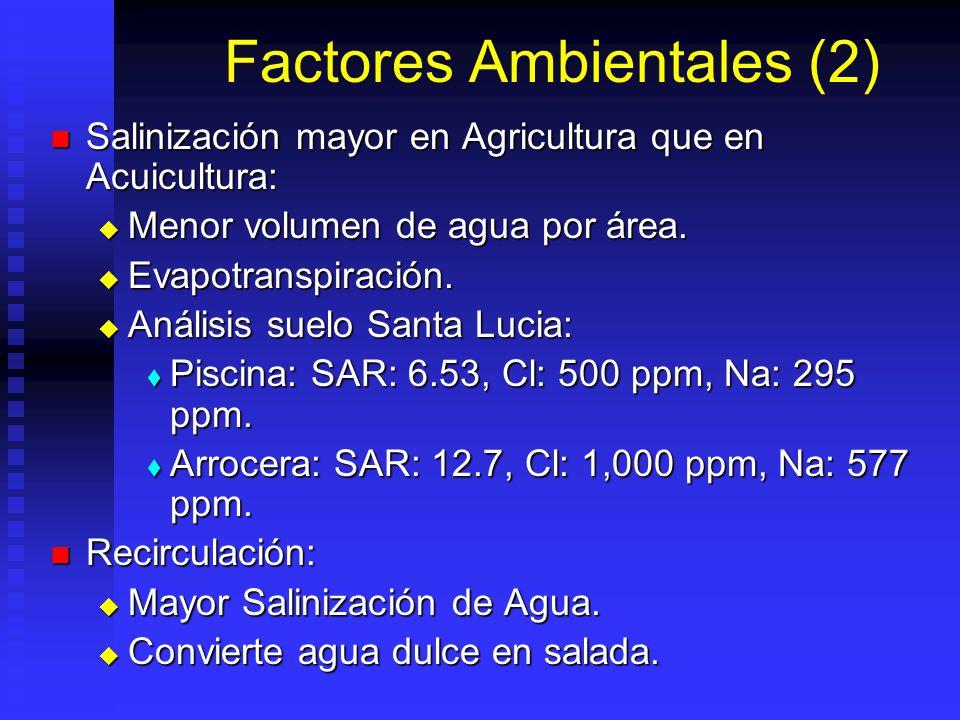 Factores Ambientales (2) Salinización mayor en Agricultura que en Acuicultura: Salinización mayor en Agricultura que en Acuicultura: Menor volumen de agua por área.
