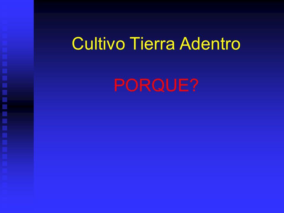 Cultivo Tierra Adentro PORQUE?